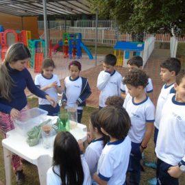 Avaliando a permeabilidade dos diferentes tipos de solos