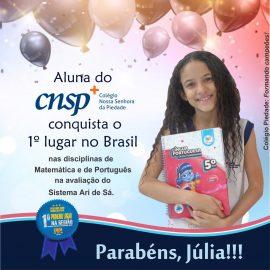 Aluna do Colégio Piedade conquista o primeiro lugar no Brasil nas disciplinas de Matemática e de Português na avaliação do Sistema Ari de Sá.