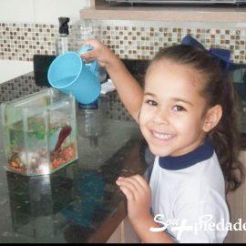 Dia Mundial da Água. Por que comemorar esta data?